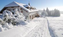 Zima v lednu 2013